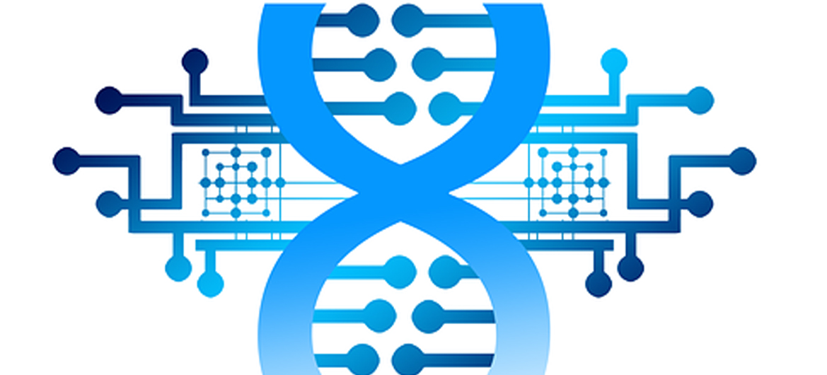 The Changing DNA of the CIO CIO as Business Enabler